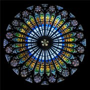 rose-window-536376__180